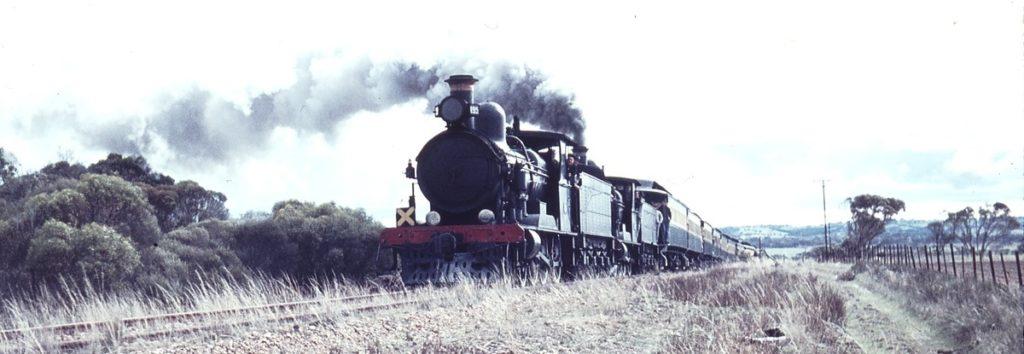 ARHS Special Rx 195 Rx 233
